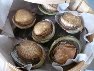 Abalone_2008_006