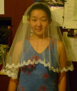 Veil_and_bride_mate_017