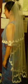 Veil_and_bride_mate_022